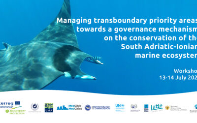 Workshop on Managing Transboundary Priority Areas: Towards a governance mechanism on the conservation of the south Adriatic-Ionian marine ecosystem